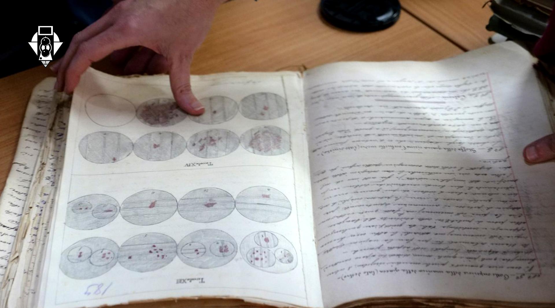 Методика обучения работе с фотографией как источником научных доказательств